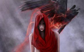 Art, girl, hood, red, bird, raven, magic