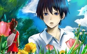 Arte, Arietti di Lilliput, anime, ragazza, tipo, fiori, cielo, nuvole, erba, alberi