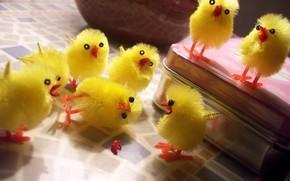 цыплята, желтый, фантастика, сцена