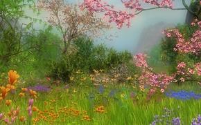 романтика, разноцветные цветы, лето