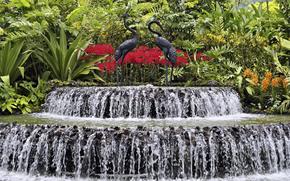 ПАКР, greens, Flowers, fountain, waterfall, Black, stork, drops, spray, JETS