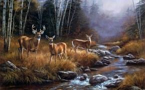 pintura, paisaje, bosque, ro, arroyo, niebla, Octubre, ciervo