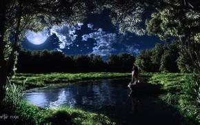 арт, девушка, ночь, луна, озеро, камень, деревья, обнажена, облака, трава