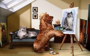 художественная фотография, композиция, Зло, собаки, кошки, улица, art photo, composition, evil, dogs, cat, street