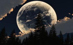 空, 雲, 月, 森
