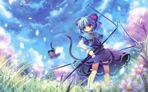 ragazze, mouse, coda, orecchie, sakura, giorno, fiori