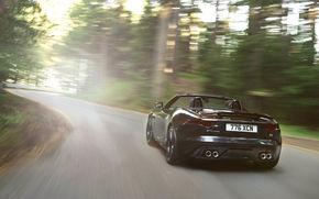 ягуар, черный, кабриолет, вид сзади, движение, свет, Jaguar