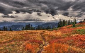 горы, осень, трава, желтая, сухая, тропинка, тропка, дорожка, тучи, пасмурно