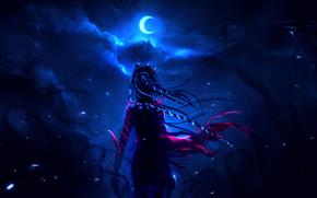 night, moon, priestess