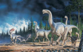 Dinosauri, immagine