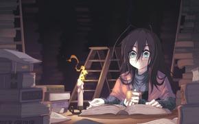 Art, girl, Books, library, candle, little man, ladder