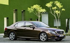 Mercedes-Benz, e-Class, hybrid, sedan, cars, machinery, Car