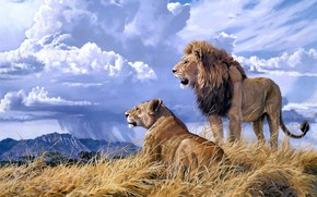 painting, animals, lion, lioness, mountain, clouds