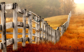 field, grass, fence, fence, nature, yellow