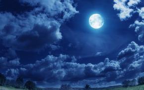 夜, 月亮, obloka, 树, 景观