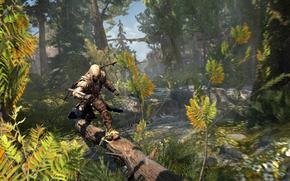 Connor, foresta, corre