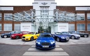 Bentley, Continentale, Mulsan, anteriore, edificio, sfondo, Bentley