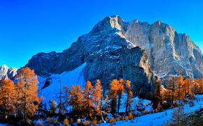 горы, деревья, снег, пейзаж