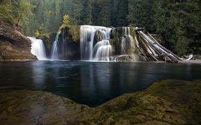 cascada, bosque, Los rboles, paisaje