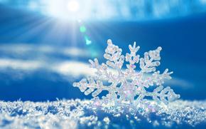Winter, snow, snowflake, pattern