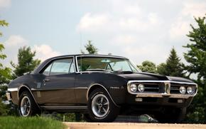 Pontiac, Faerbed, compartment, front, Black, muscle car, sky, background, Other brands