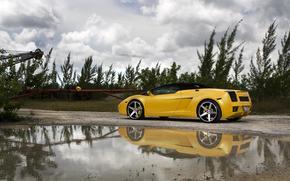 Lamborghini, Gallardo, cabriolet, giallo, vista posteriore, Unit, pozzanghera, alberi, erba, Lamborghini