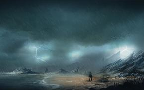 Art, coast, sea, man, rain, rocks, stones, storm, lightning, Birds