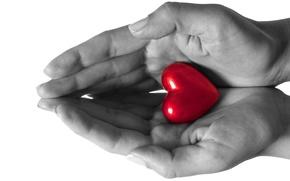 amor, manos, corazn, sentido
