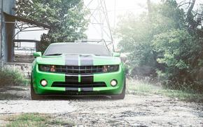 шевроле, камаро, передок, зелёный, чёрные, полосы, Chevrolet