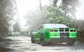 Camaro, green, back of, Trees, column, high voltage towers, Chevrolet
