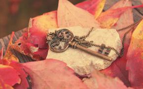 ключ, металл, листья, осень, красные, цепочка, камень, доска
