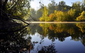 природа, озеро, вода, деревья, гладь, отражение, утро, солнце