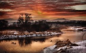 зима, река, деревья, снег, пейзаж