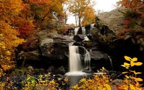 водопад, деревья, пейзаж, осень