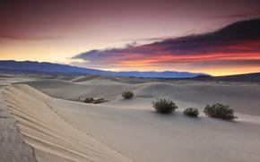 пустыня, закат, небо, пустыня на закате, пейзаж