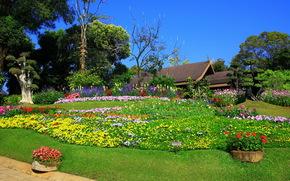 сад, дом, клумба, море цветов, деревья, небо