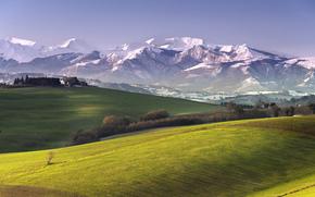 горы, поле, деревья, пейзаж