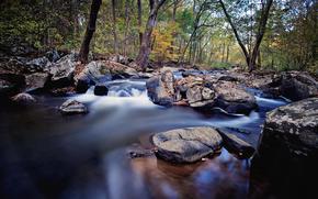 fiume, pietre, natura, paesaggio