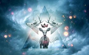 cervo, corona, paradiso, cielo, Stella, cifre