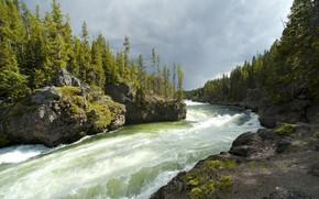 fiume, Minerario, corso, Montagne, Rocks, foresta