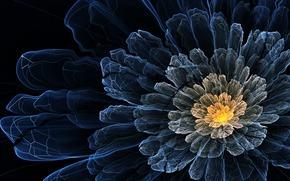 арт, цветок, темный, линии, лепестки, волнистый