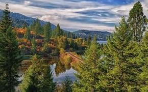 bellissimo paesaggio, Montagne, foresta, alberi, ferrovia, cielo, obloka, vodaemy