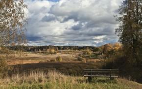campo, panchina, paesaggio