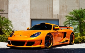Porsche, Carrera GT, orange, front view, black, CDs, wall, Flowers, porsche