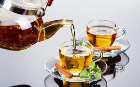 tea, cinnamon, kettle, mint, welding, cup, glass, reflection