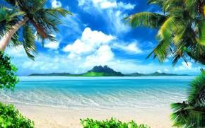 mare, palma, cielo, paesaggio