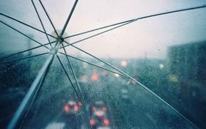 зонтик, капли, дождь, огни