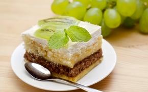 cake, dessert, cake, Cake, bit, sweet, baking, kiwi, mint, grapes