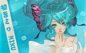 Art, Vocaloid, underwater, dress, inscription