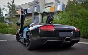Lamborghini, mursielago, Black, back of, asphalt, hatch, building, balconies, Lamborghini